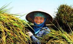 la-femme-vietnamienne-souriante