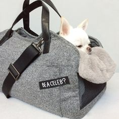 Louisdog Herringbone Tote Dog Bag