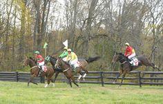 The Pennsylvania Hunt Cup, Unionville, PA, November 7, 2010