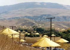Umbrellas by Christo along the Grapevine in Southern California