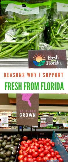 Reasons Why I Support Fresh From Florida #followthefresh #IC #ad