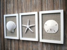 This set of three frames is 5 7/8 x 7 3/4 inch each (measuring each outside dimensions) and would be a lovely nautical addition to your home