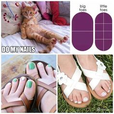 Springtime is time for pretty toes!  Jamberry nail wraps last for 4-6 weeks on toes and look perfect the entire time!  Take a look!! #fingernailsparkle #pedicures  Visit my facebook page and request a sample!