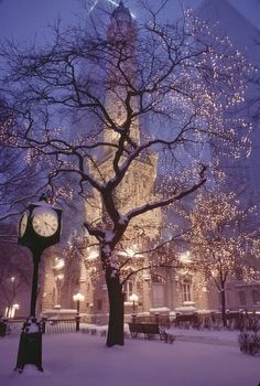 Chicago in the Winter city lights winter pretty snow christmas chicago