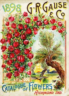 Historic American Seed and Plant Catalogs from Smithsonian Institution Libraries