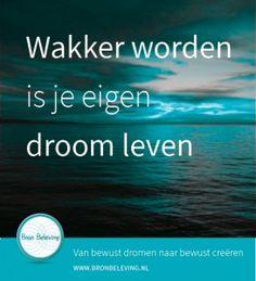 Als de misstanden van de wereld je frustreren dan heb je misschien de behoefte om mensen te laten zien wat je hebt ontdekt ze wakker schudden maar je mag ook gaan doen wat je gelukkig maakt. http://www.bronbeleving.nl/creatie-proces/wakker-worden-is-je-eigen-droom-leven/