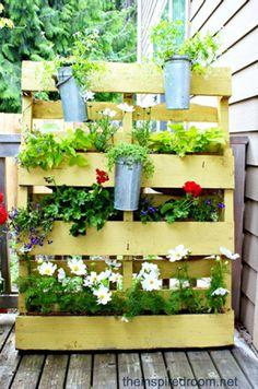 Jardín de flores vertical con un palé
