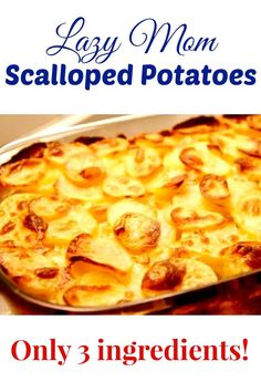 Scalloped Potatoes Lazy Mom Scalloped Potatoes {Only 3 Ingredients!}Lazy Mom Scalloped Potatoes {Only 3 Ingredients! Gluten Free Scalloped Potatoes, Easy Cheesy Scalloped Potatoes, Scalloped Potato Recipes, Easy Potato Recipes, Scallop Recipes, Crockpot Scalloped Potatoes, Scalloped Potatoes Au Gratin, Tuna Recipes, Scalloped Potatoes With Evaporated Milk Recipe