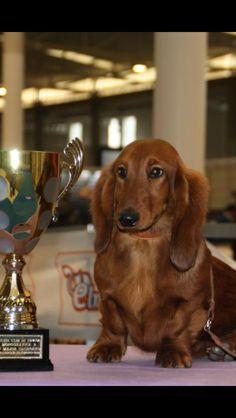 Sunny y su premio, es muy linda!!