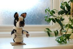Small Bob - free crochet pattern by Monica Rodriguez at Malabrigo. Based on Ravelry's lovable mascot Boston Terrier Bob (who died recently:(