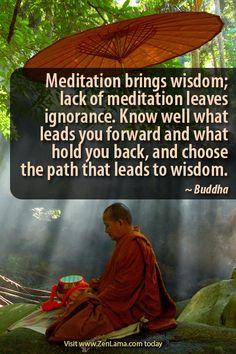 Choose the path which leads to wisdom by lovingjulia Buddhist Meditation Techniques, Meditation Quotes, Mindfulness Meditation, Buddhist Quotes, Spiritual Quotes, Buddhist Wisdom, Spiritual Path, Buddhist Philosophy, Buddha Buddhism