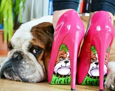 """#English #Bulldog. """"My mom's new purchase. Check this out!"""""""