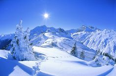 Winter vacation in Austria – Winter Holiday Ideas Travel Around The World, Around The Worlds, Especie Animal, Colorado Winter, Ski Posters, Winter Mountain, Ski Holidays, Austria Travel, Winter Landscape