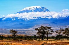 How to climb Mt. Kilimanjaro for cheap / Bring the Kids Blog