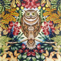 Johanna Basford | Colouring Gallery | by Morena Vajak #myCreativeEscape
