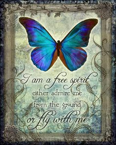 """I am a free spirit, either admire me from the ground or fly with me"". The Vintage Angel"