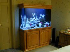 80 Gallon Marine Fish Tank, Aquarium Design, Marine Aquariums and Coral Reef Aquarium Tank, Stand, Canopy, and Aquarium Filter System