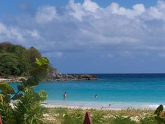 Caracas Beach (Isla de Vieques, Puerto Rico): Top Tips Before You Go - TripAdvisor