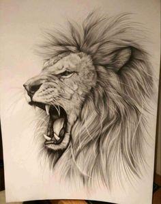 Lionnn