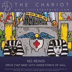 Little Fox Tarot           - #chariot #majorarcana #tarot #littlefoxtarot...