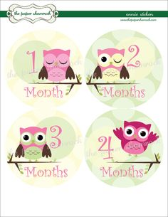 My First Baby stickers Milestone Onepiece Stickers monkey Baby Girl Monthly Stickers Baby Shower Gift I can stickers pink brown decals label