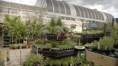 At this large garden centre on leafy Bishops Avenue, the staff are helpful and the selection of plants is strong. The fine bedding plants and shrubs make it sta Beautiful London, Most Beautiful, Palace Garden, London Garden, Garden Planner, Fulham, Amazing Gardens, Shrubs, Garden Centre
