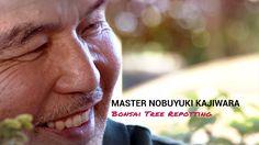 171) Bonsai Masterclass - Stress free Bonsai Repotting With Master Nobu ...