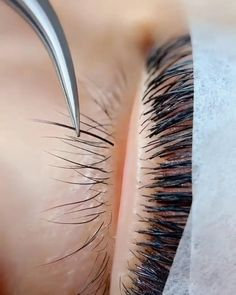 Eyelashes How To Apply, Perfect Eyelashes, Bottom Eyelashes, Eyelash Extensions Salons, Eyelash Salon, Eyelash Lift And Tint, Eyelash Extension Supplies, Eyelash Technician, Hair Salon Interior