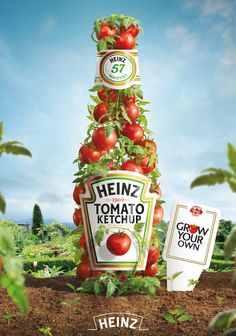 Heinz encourages public to grow their own tomatoes to promote the goodness than goes in its ketchup