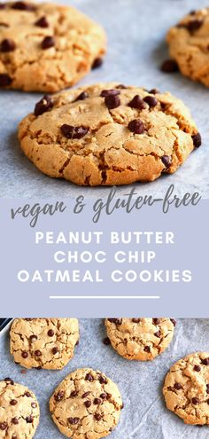 Delicious and healthy Peanut Butter & Choc Chip Oatmeal Cookies that are gluten free, packed with protein and come with a vegan option. Easy Gluten Free Desserts, Easy Desserts, Delicious Desserts, Healthy Desserts, Healthy Recipes, Vegan Sweets, Healthy Food, Pavlova, Baking Recipes
