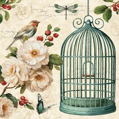 Lisa Audit Free as a Bird I Keilrahmen Bild Leinwand Vogel Blumen Landhaus Deko Canvas Artwork, Canvas Frame, Canvas Art Prints, Painting Prints, Fine Art Prints, Big Canvas, Canvas Size, Bird Artwork, Decoupage Vintage