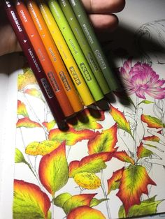 Coloring Book Art, Leaf Coloring, Colouring Pages, Adult Coloring Pages, Coloring Tips, Colored Pencil Tutorial, Colored Pencil Techniques, Diy Y Manualidades, Colouring Techniques