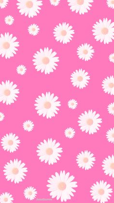 Flowers background iphone wallpapers gift wrapper 39 new Ideas Pink Daisy Wallpaper, Iphone Wallpaper Pink, White And Gold Wallpaper, Flower Background Wallpaper, Trendy Wallpaper, Flower Backgrounds, Screen Wallpaper, Cute Wallpapers, Wallpaper Backgrounds