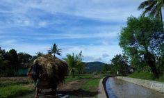 Ciranjang, Cianjur, Indonesia on 31 March 2013