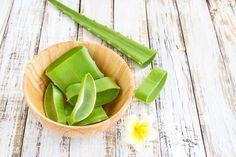 Pěstujete doma aloe vera? Vyrobte z ní hojivý gel, detoxikační likér či sirup - Hobby