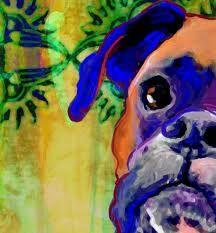 Boxer dog artwork