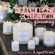 candle/diffuser giveaway PALM BEACH COLLECTION