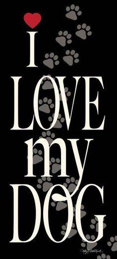 #rescuedog #dog #itsarescuedoglife #pitbullquotes
