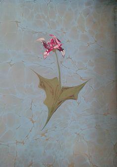 ebru sanatı ( marbling art ) by mai