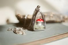 Little fairytale mushroom terrarium necklace.