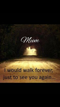 And I still wouldn't be able to let go, I miss you so much. our talks, our laughs, our whispers, our everyday life. I miss you mom.