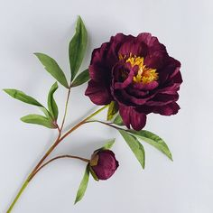 Peony from leftovers. (I'll fight to the death for whatever is left of this deep garnet color 😉- it has turned out to be quite popular!)) And the mulberry paper is turning into a 'forever' thing too. Celadon and garnet . Crepe Paper Flowers Tutorial, Paper Flowers Craft, Paper Flower Backdrop, Giant Paper Flowers, Fake Flowers, Flower Crafts, Diy Flowers, Fabric Flowers, Beautiful Flowers