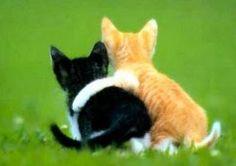 abrazo de costado