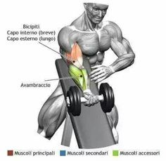 Muscle Building Tips. Grow Strong, Live Long: Fitness Secrets From The Experts. Many people consider fitness to be an important goal. However, it can be difficult to find the right information you need about fitness due to the vast amo Fitness Gym, Muscle Fitness, Fitness Tips, Fitness Motivation, Health Fitness, Lifting Motivation, Fitness Shirts, Muscle Food, Gain Muscle