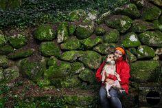 Dog photography in Serra de Sintra - Portugal pet photography
