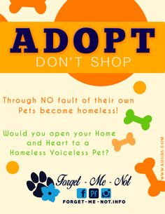 Looking for a new friend?   Chose Adopting and help save a rescue pet while giving them love and a life of happiness! For everyone Adopted Forgetmenot Inc. is able to save another life!