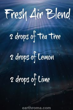 Fresh Air Diffuser Blend - Add this blend to your diffuser for a great fresh aroma.  2 drops of Tea Tree essential oil. 2 drops of Lemon essential oil. 2 drops of Lime essential oil.