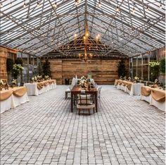 55 Best Winter Wedding Images Greenhouse