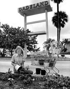 When it opened on October 1, 1962, on Kendall Drive off U.S. 1, Dadeland was dubbed 'deadland' because North Kendall Drive, which passes in front of it, was branded ``The Road to Nowhere.'' Built as an open-air strip center, Dadeland started up at 400,000 square feet with 62 merchants, including Burdines as its only anchor. But Miami-Dade's explosive population growth along with the construction of thousands of affordable units of tract housing, the opening of the Palmetto Expressway, the… Vintage Florida, Old Florida, Miami Florida, South Florida, Miami Beach, Miami Pictures, Miami Photos, Miami Architecture, Crandon Park