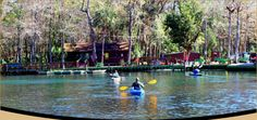 Chassahowitzka River Campground: kayak rental is $20 for the WHOLE DAY.  DONE - great spot, worth a return trip.